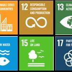 ELBA's contribution to the Sustainable Development Goals (SDGs)
